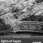 Andrea Lippi fotografia Lights of Japan